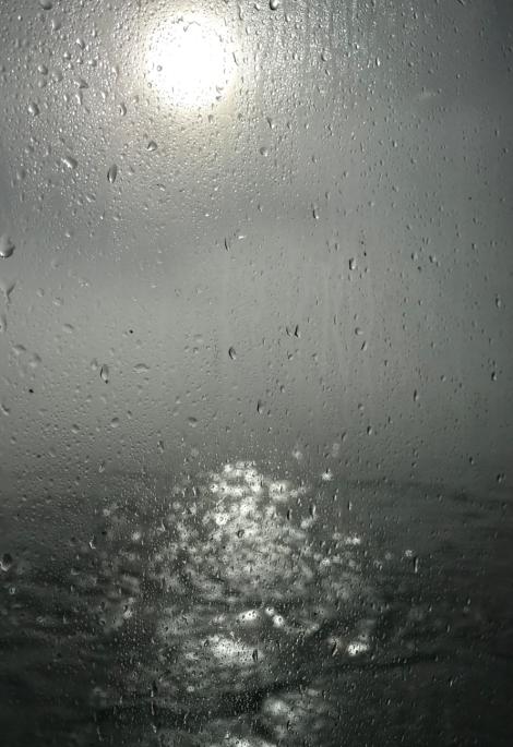 Screen Shot 2019-02-13 at 7.21.54 AM